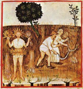 Ilustración del feudalismo