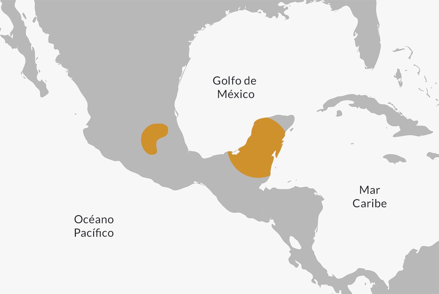 Toltec Civilization | History, Culture, Economy, Religion & Characteristics