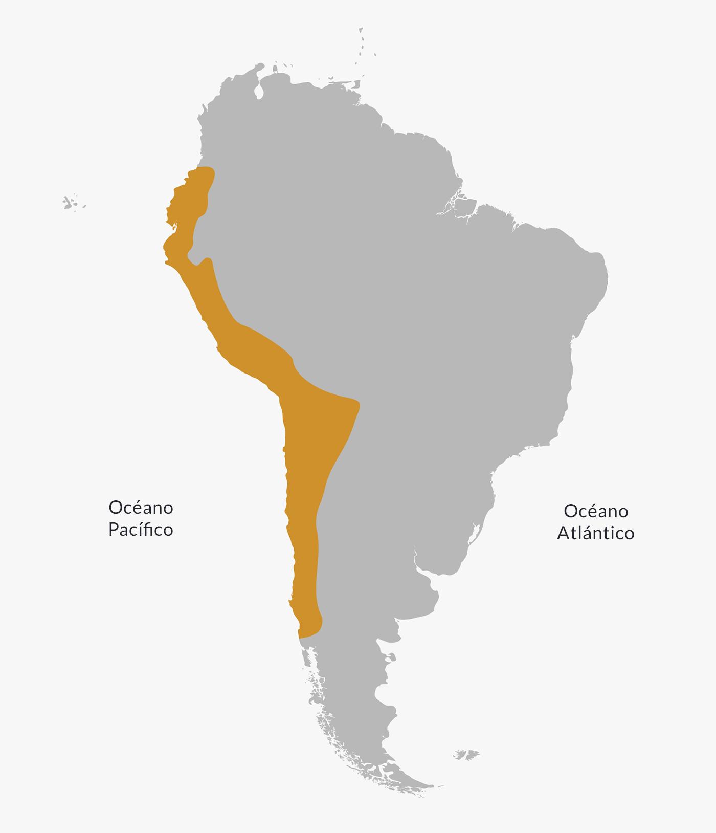 Ubicación de la cultura inca.