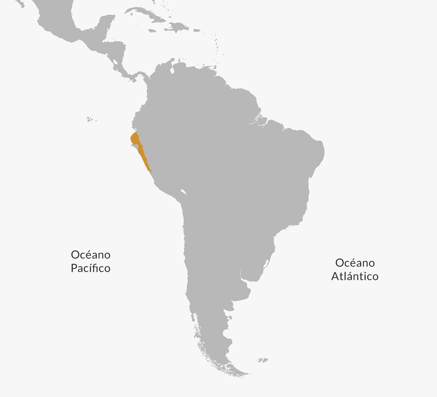 Mapa de la civilización chimú