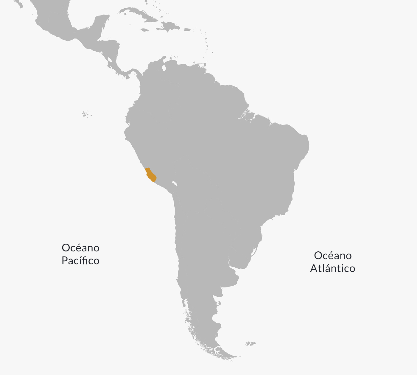 Paracas Culture: History, Religion, Economy & Characteristics