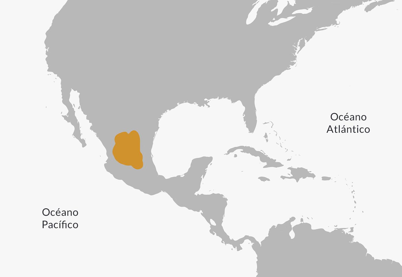 Mapa de ubicación de los chichimecas