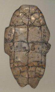 fotografía de un caparazón de tortuga con inscripciones adivinatorias